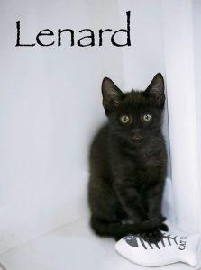 LENARD