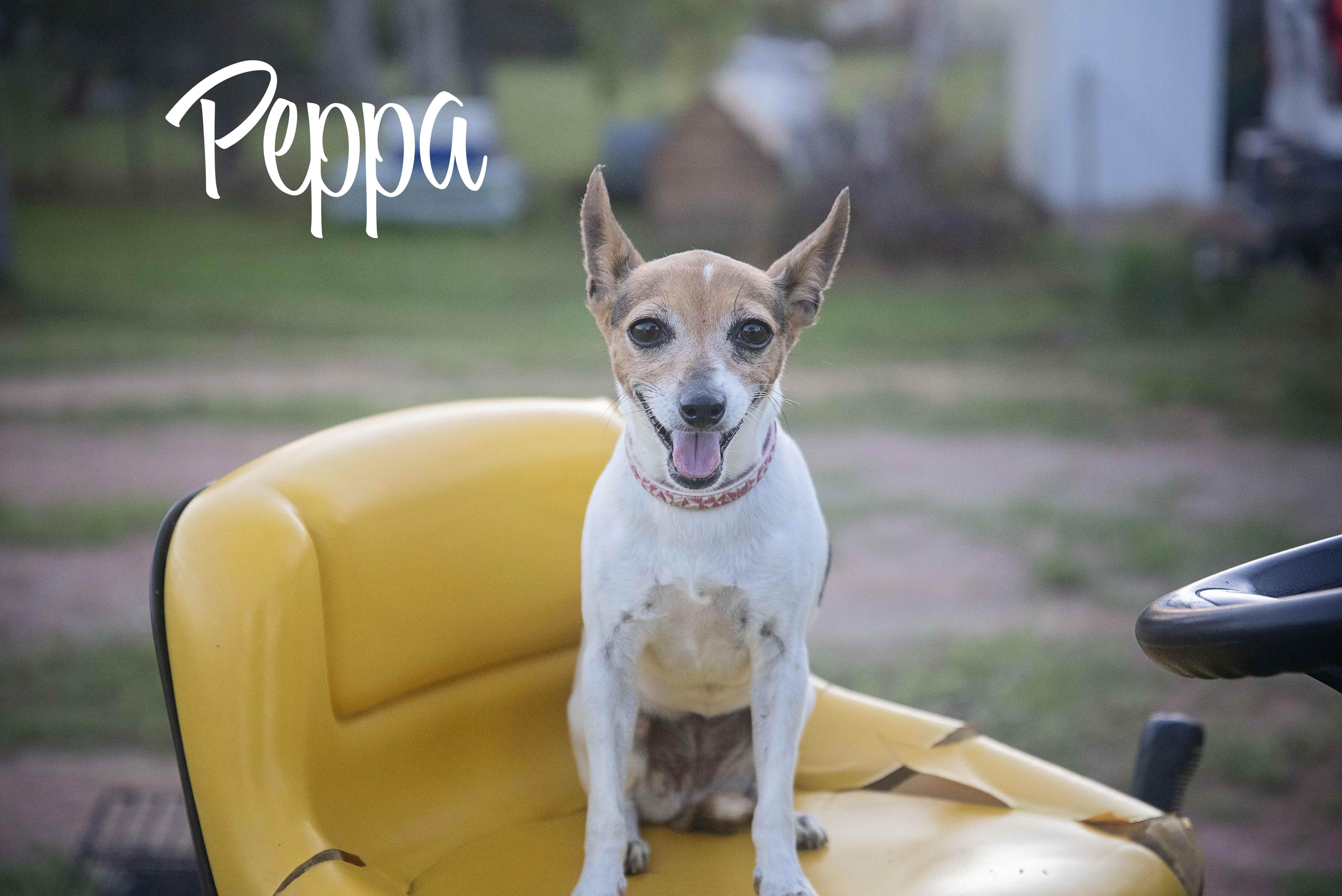 Peppa